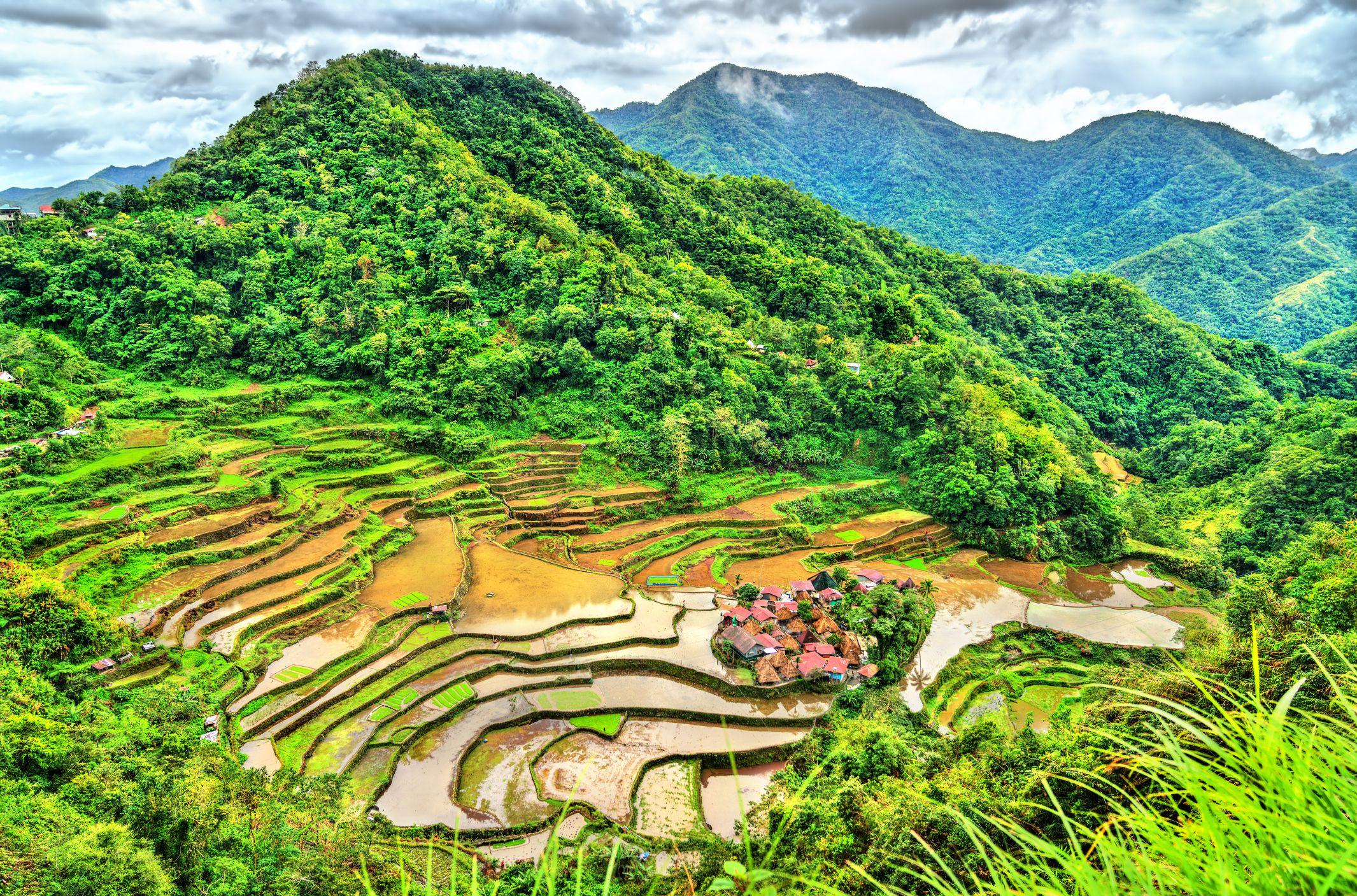 Faceti drumetii prin terase de orez si munti