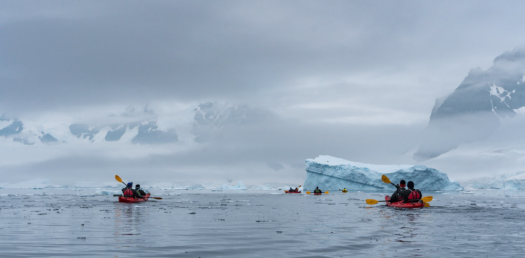 Antarctica, Insula Cuverville