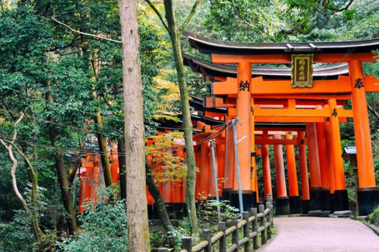 Altarul Fushimi Inari Taisha