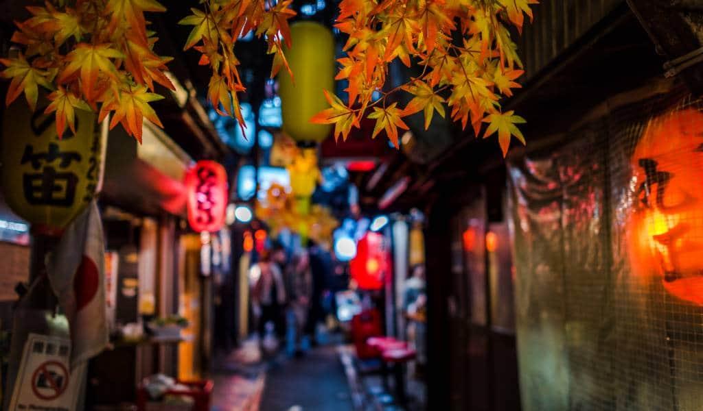 Mancati Yakitori si Plimbaati-va prin Omoide Yokocho